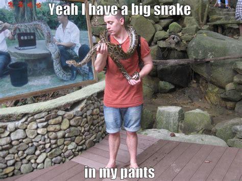 Penis Memes - snake penis quickmeme