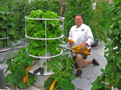 Aeroponic Tower Garden by Grow Your Own Food With Vertical Gardens Tom Corson Knowles