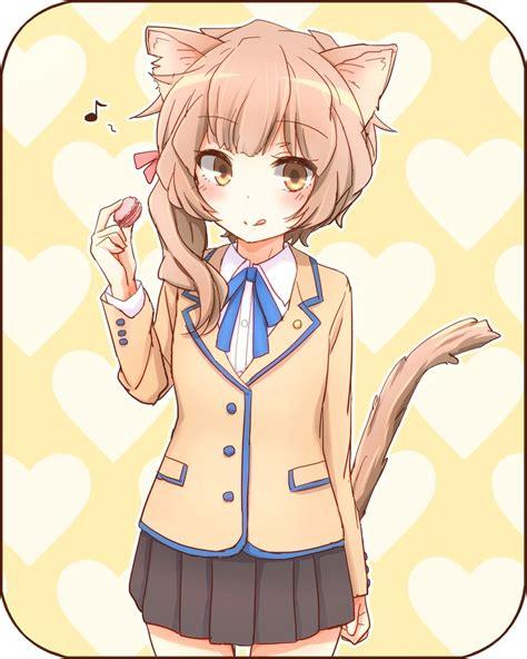 imagenes de nekos kawaii para dibujar nekos muchos nekos anime taringa