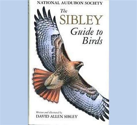 sibley guide to birds the bird man