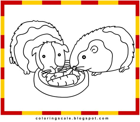 guinea pig coloring pages free printable guinea pig printable coloring pages