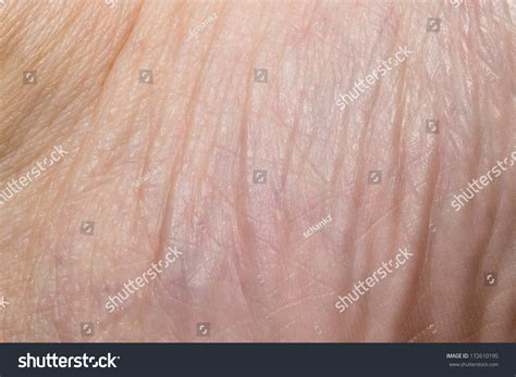 up human skin macro epidermis stock photo image of anatomy freckles 36429390 background human skin macro stock photo 172610195