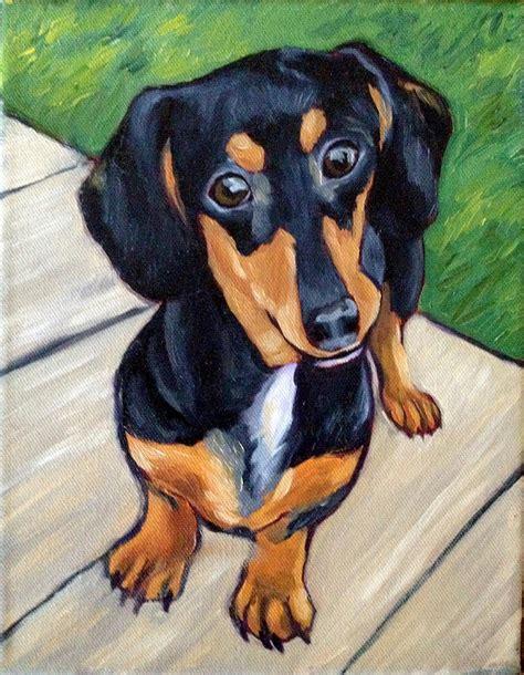 tri color dachshund dachshund a dawg s