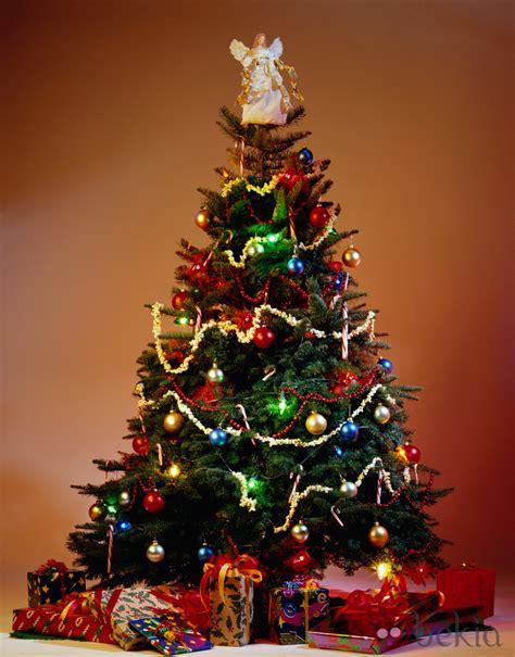 christmas holiday sgm abogados