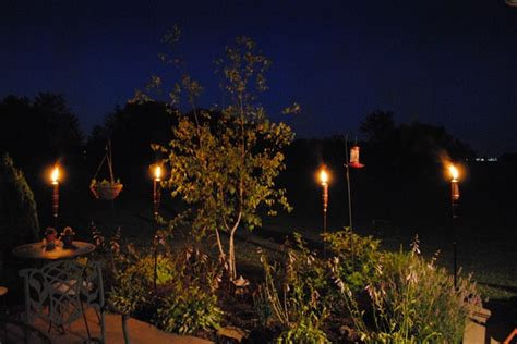 Best Backyard Lighting by 3 Best Backyard Lighting Ideas Diy And Crafts