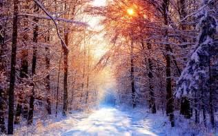 beautiful winter beautiful winter wallpaper 345709