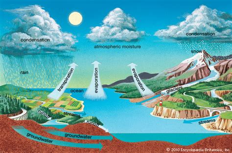 You Who Came From The Indo Text Kualitas Hd this is evaporation evaporation is when liquid water cha
