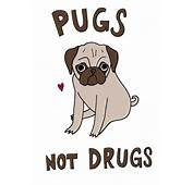 Minutes In The Microwave Pugs Not Drugs