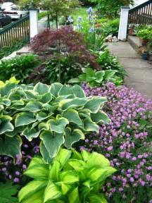 hosta gardens on pinterest hosta plants shade garden