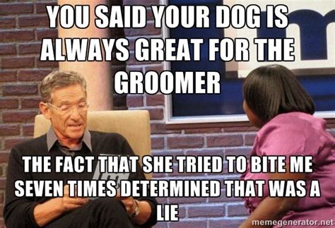 Dog Groomer Meme - more groomer humor dog grooming pinterest