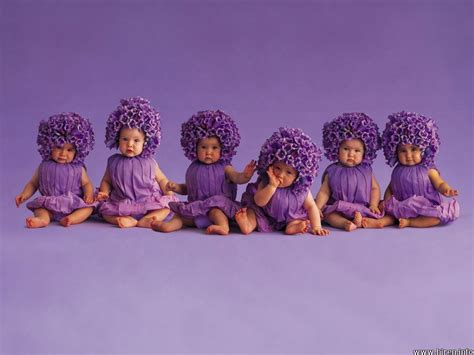 Baby Purple baby baby 6 babies in purple clothes