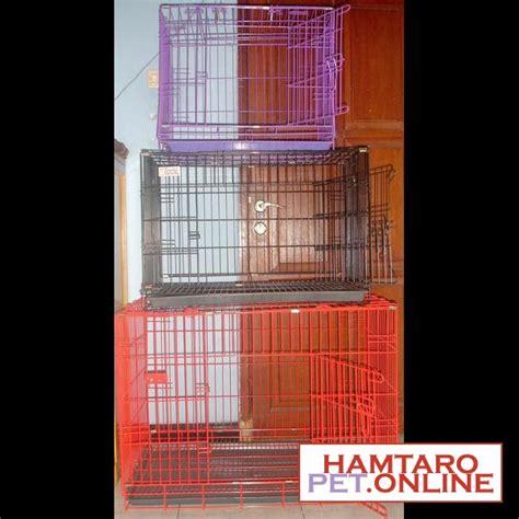 Kandang Kucing Surabaya hamster dan kucing murah surabaya dijual kandang