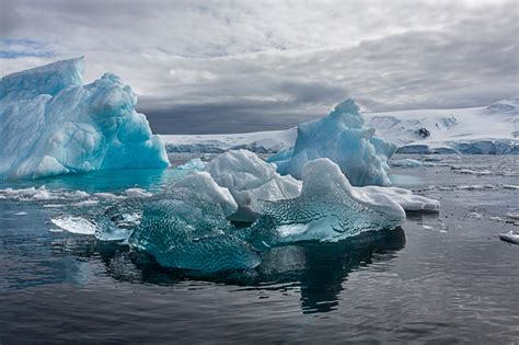 Unique Photo Gifts by Blue Icebergs Cierva Cove By William Neill Susan