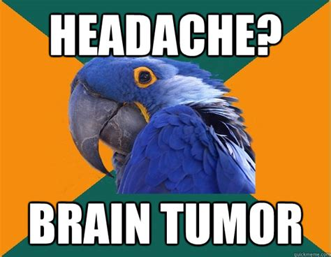 Brain Cancer Meme - headache brain tumor paranoid parrot quickmeme