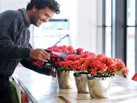 fiori recisi ingrosso come acquistare fiori recisi foglie e fogliami dal grossista