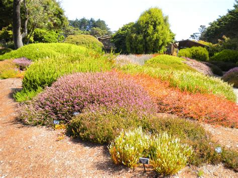 fort bragg botanical gardens weekend mendocino county road trip list publications