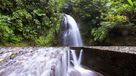 exploring the alluring tropical waterfalls of martinique
