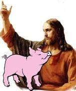 testa di merda porco dio