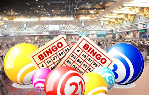 top  bingo games   play     casino