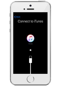 How to set up my Apple iPhone SE with iTunes