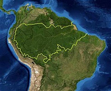 amazon wikipedia indonesia hutan amazon wikipedia bahasa indonesia ensiklopedia bebas