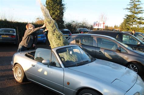 car with tree image best car to transport a tree t w white sons