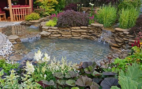 remove algae and pond weed from water features news