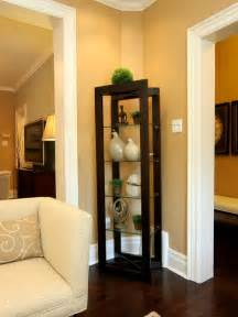 Curio Cabinet Design Ideas Awesome Curio Cabinet Designs