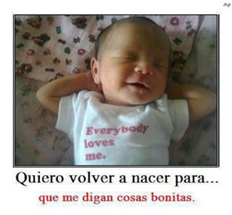 imagenes chistosas lindas con frases 17 best images about acudits on pinterest frases