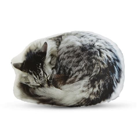 Cat On Pillow by Sleeping Cat Printed Pillow