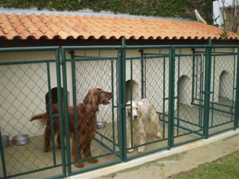 layout de hotel para cachorro 15 modelos de canis pequenos para cachorros