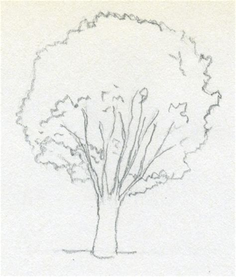 easy tree to draw easy tree drawing with leaves