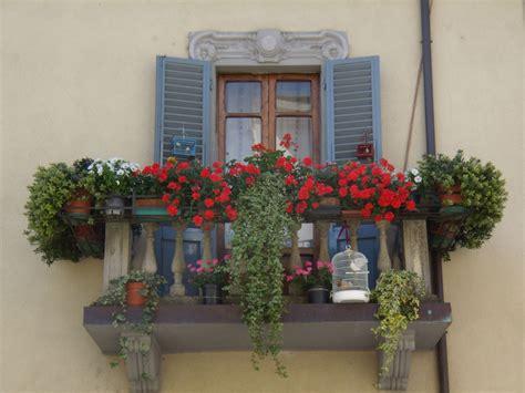 fiori sul balcone come coltivare fiori sul balcone