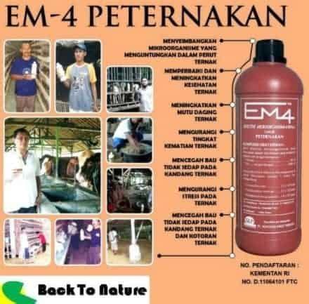 Em4 Peternakan By Jj Hidroponik jual em4 peternakan 1 liter bibit