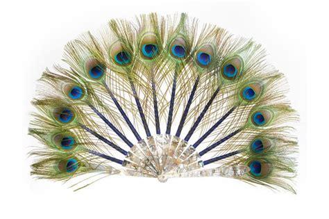 paon bleu nuit fantastic pinterest peacocks animal