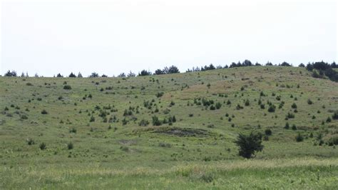 Rural Development Usda by Usda Expands Grasslands Conservation Program To Small