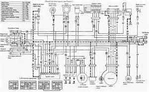 1984 harley wiring diagram get free image about wiring diagram