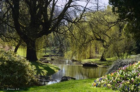 fonds d cran nature gt fonds d cran parcs jardins parc