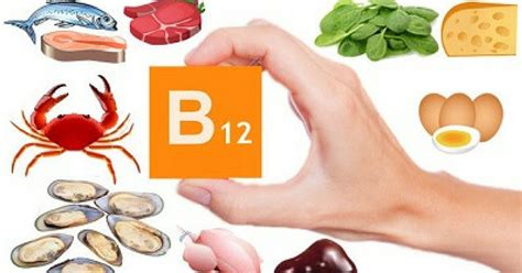 vit b12 alimenti b12 la vitamina dell energia parte 2 ambiente bio