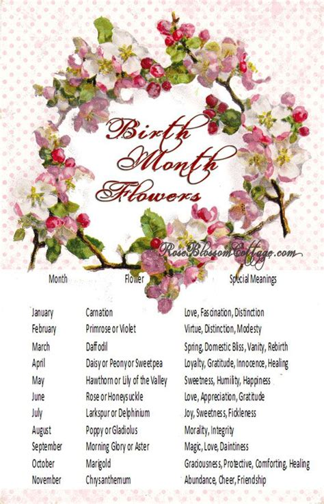 birth month flowers birth flowers and meanings girls names tattoo ideas
