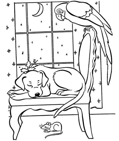 coloring pages winter animals free coloring pages of winter animals archives