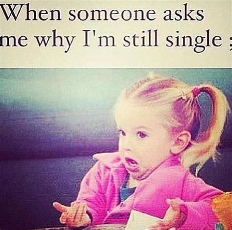 Why Are Memes Funny - 1000 ideas about being single memes on pinterest funny