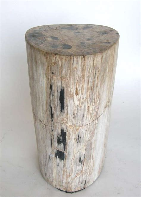 Petrified Wood Side Table Petrified Wood Side Table At 1stdibs