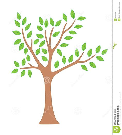 Spring Tree With Leaves Stock Vector Illustration Of