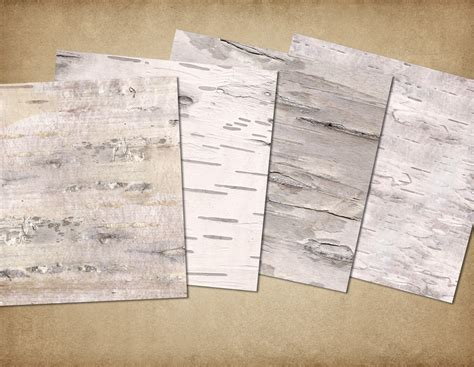 How To Make Birch Bark Paper - birch bark digital paper by digital curio thehungryjpeg