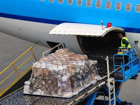 air cargo handling cfs
