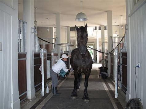 Martha Stewart Rides A Stallion by Martha Stewart S Barn Wow Fanciest Barn I Seen