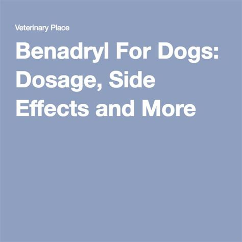 benadryl side effects in dogs best 25 benedryl for dogs ideas on pet meds allergies in dogs and