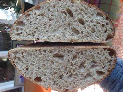 50 hydration dough 50 50 wholewheat sd and 2nd hydration any thoughts