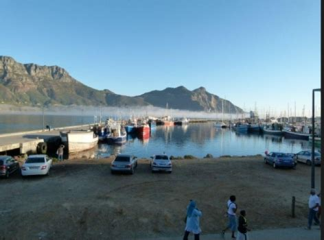 vodacom hout bay amessage from the chairman of the residents association